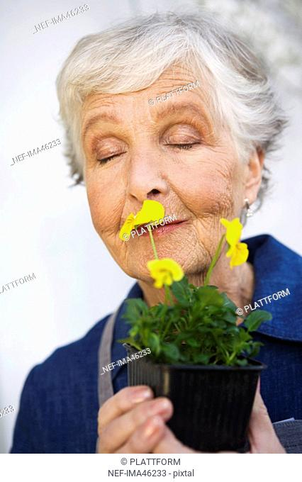 An older woman holding a flower Sweden