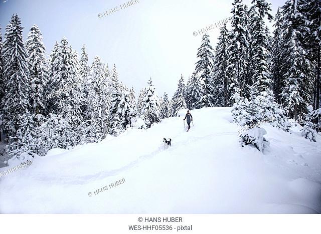 Austria, Altenmarkt-Zauchensee, young woman with dog on snowshoe hike in winter forest