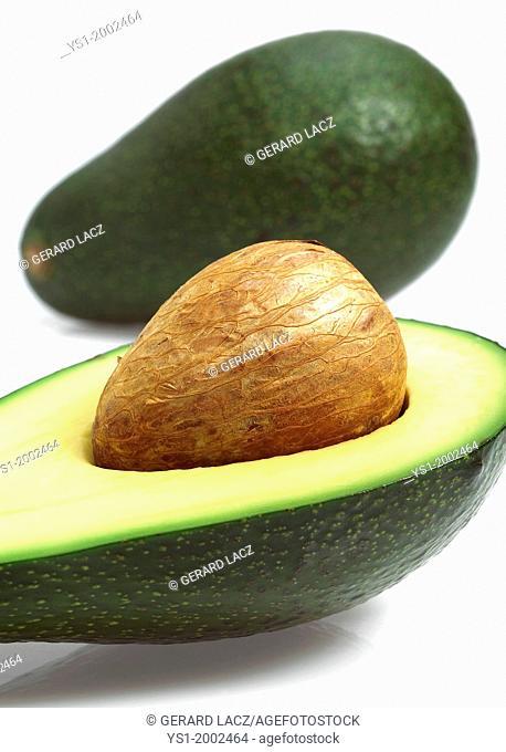 Avocado, persea gratissima against White Background