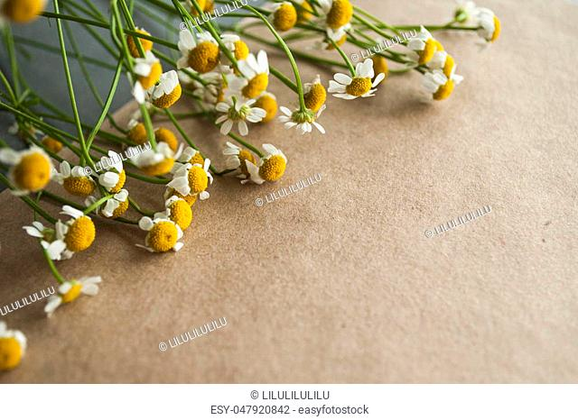 Camomile bouquet on a brown natural craft paper background