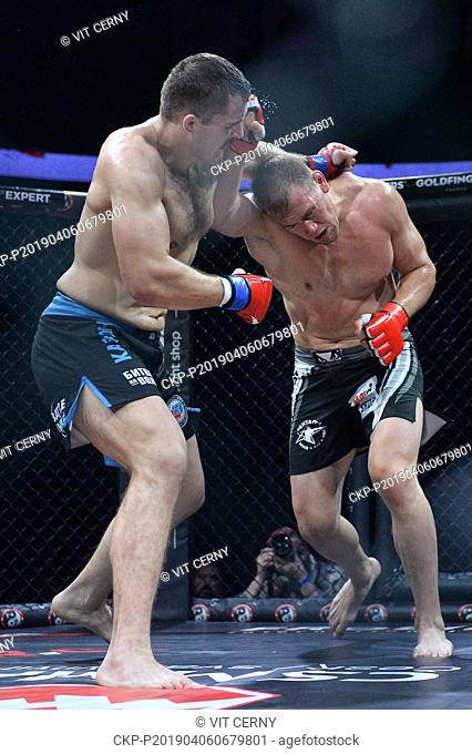 Czech MMA fighter Viktor Pesta (right) fights with Croatian fighter Ivan Vitasovic during the Night of Warriors gala evening on April 6, 2019, in Liberec