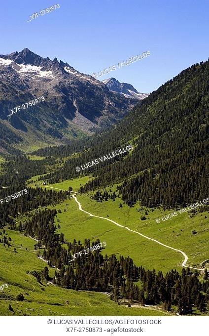 Ruda Valley,Aran Valley,Pyrenees, Lleida province, Catalonia, Spain