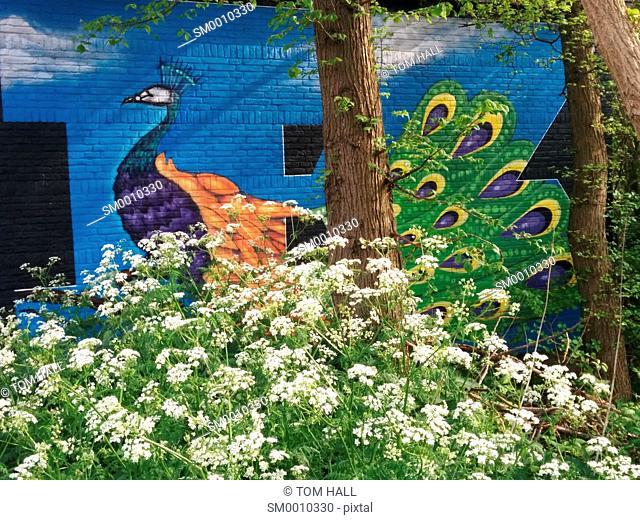 Grafiti street art