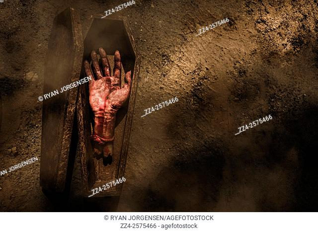 Horror photo of a sawn off hand in a small coffin in a shroud of afternoon mist. Open case of revenge