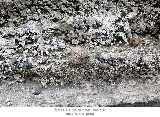 Lapilli, volcanic bombs, in ash deposits, Kilauea, Hawaii Volcanoes National Park, USA