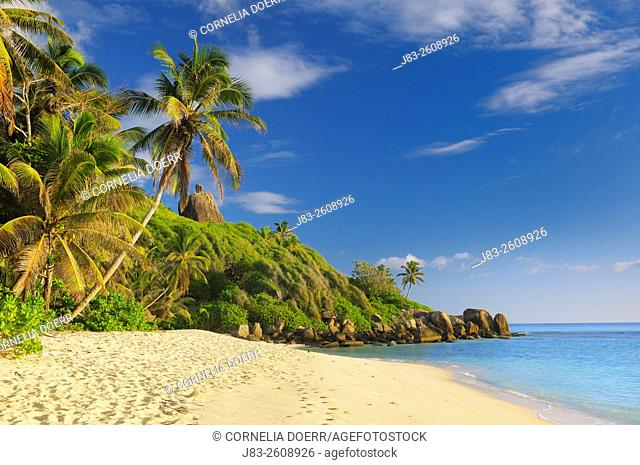 Tropical Beach with Palm Trees at Anse Forbans, Mahe, Seychelles, Indian Ocean