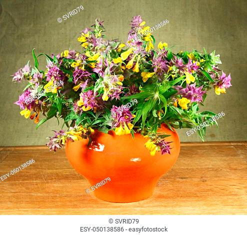 Melampyrum nemorosum. Still life. Bouquet of meadow flowers in orange pots standing on a wooden table. Rustic style