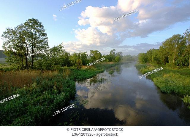 Suprasl river near the town of Suprasl in the Podlasie region. Eastern Poland