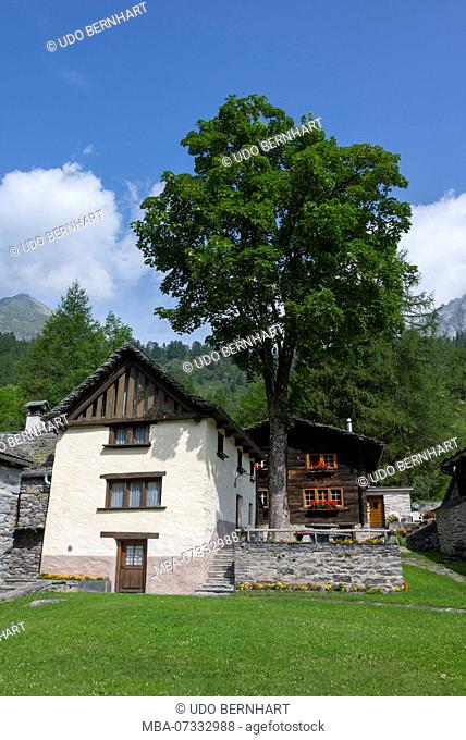 Townscape Mountain village Walser settlement Bosco Gurin, Val di Bosco, Vallemaggia, Ticino, Switzerland