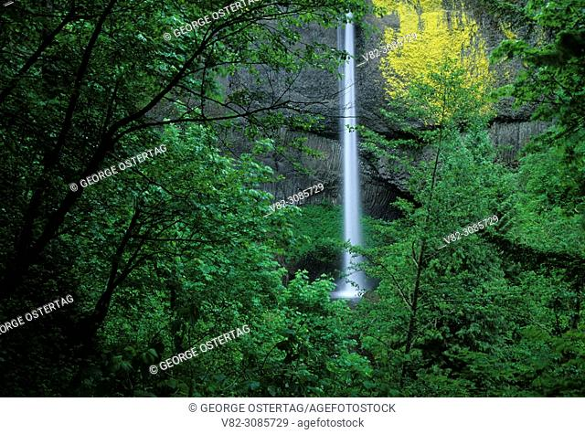 Latourell Falls, Guy Talbot State Park, Columbia River Gorge National Scenic Area, Oregon