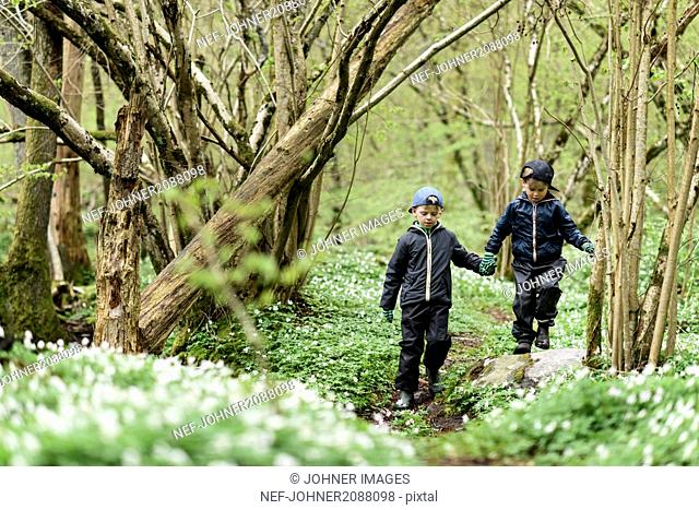 Two boys walking in forest