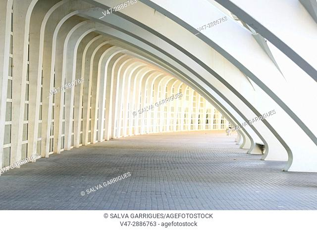 Corridor in the City of Arts and Sciences of Valencia, Spain