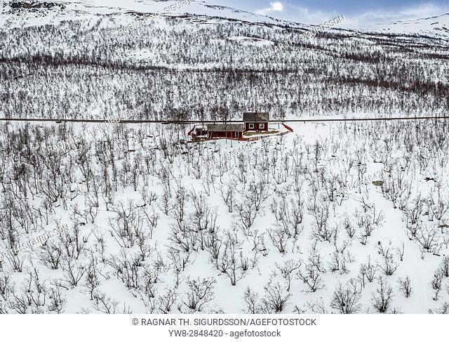 Aerial-trees in the winter, Lapland, Sweden. Drone photography
