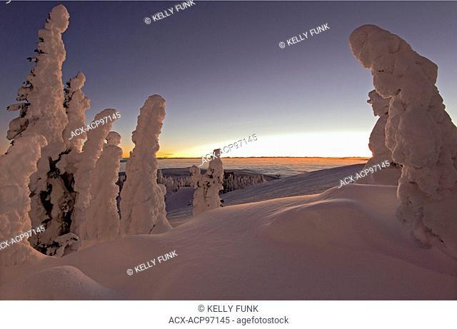 Snow ghosts create a beautiful environment before sunrise at the top of Sun Peaks Resort, Thompson Okangan region, British Columbia, Canada