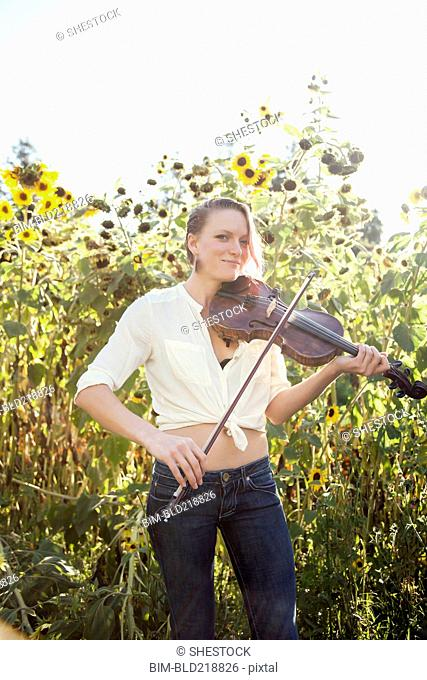 Caucasian musician playing violin in sunflower garden