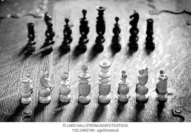 Chess pieces lined up. Conceptual image of strategy and competition