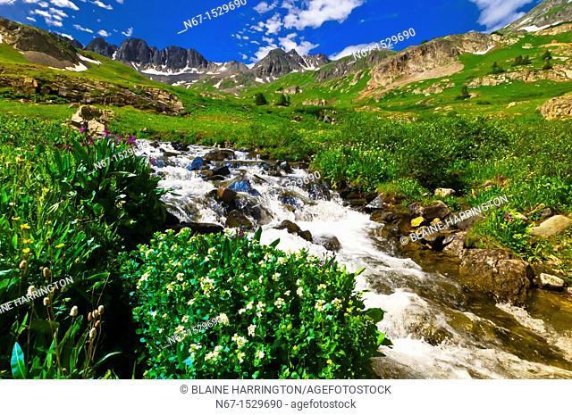 Mountain streams, American Basin, San Juan Mountains range of the Rocky Mountains, Southwest Colorado USA