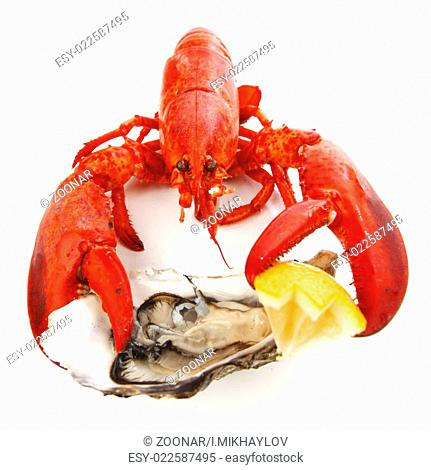 Lobster and oyster