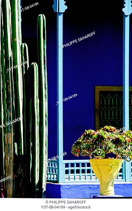Majorelle Garden, Marrakech, Morocco, Africa