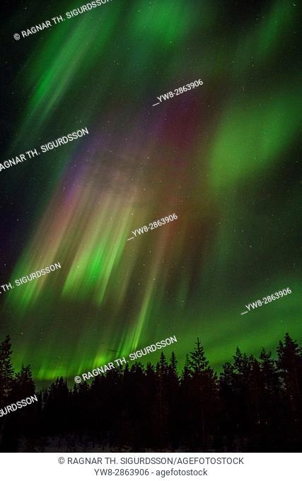 Northern Lights, Lapland, Sweden