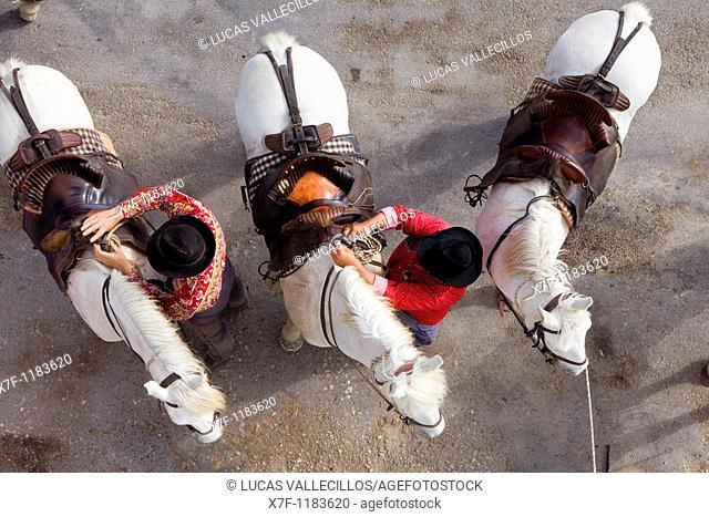 Gardians horsemen that works with bull of Camargue Les Saintes Maries de la Mer,Camargue, Bouches du Rhone, France