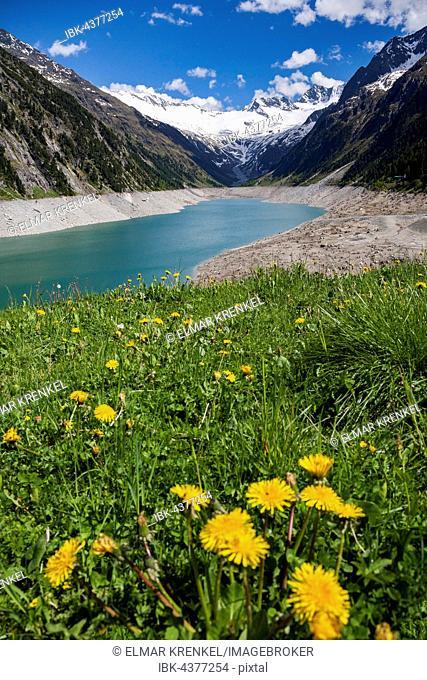 Lake Schlegeis, Schlegeis reservoir, in the back Glacier Schlegeiskees with Hochfeiler, Zillertal Alps, Zillertal, Tyrol, Austria