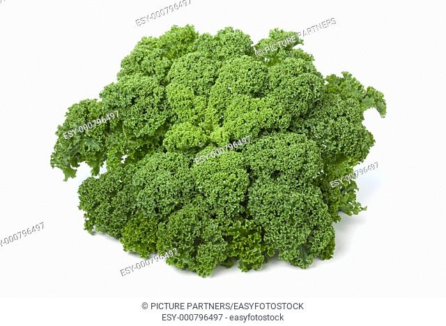 Curly kale on white background