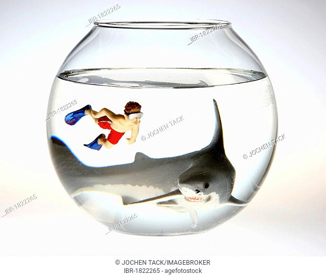 Toy shark and a boy swimming with diving goggles and flippers in a fish bowl