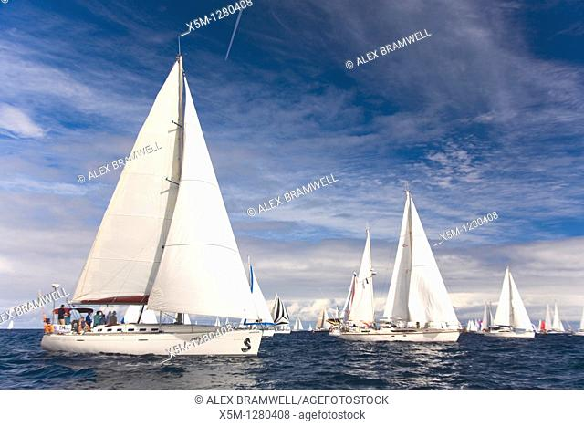 The ARC Race Leaves Las Palmas on the Way to St Lucia