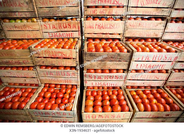 Crates of tomatoes at Lo Valledor central wholesale produce market in Santiago, Chile