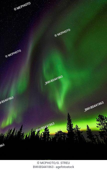 polar lights, Sweden, Lapland, Norrbotten, Muddus NP