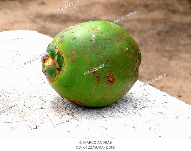 one green natural coconut fruit