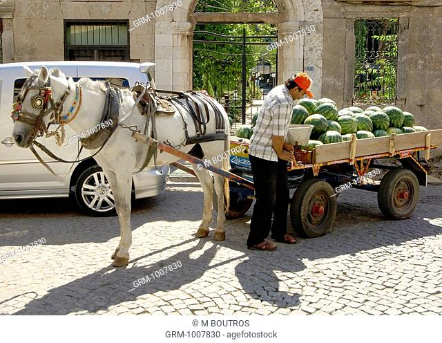 Horse carriage loaded with water melons, Antalya, Turkey