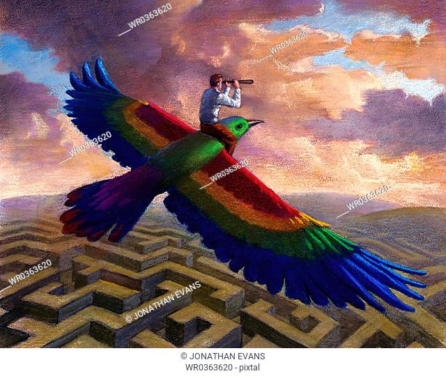 Man Rides Colorful Bird