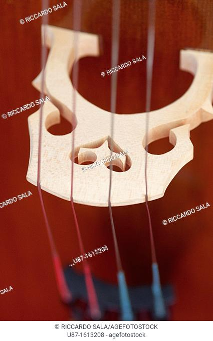Italy, Lombardy, Cremona, Violin Maker Worshop, Close up Violin