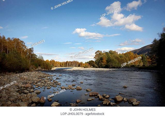 Scotland, Highland, Glen Feshie, Autumn colours around Glen Feshie