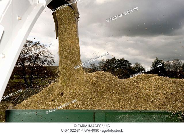 Claas self propelled harvestor harvesting maize silage crop. (Photo by: Wayne Hutchinson/Farm Images/UIG)