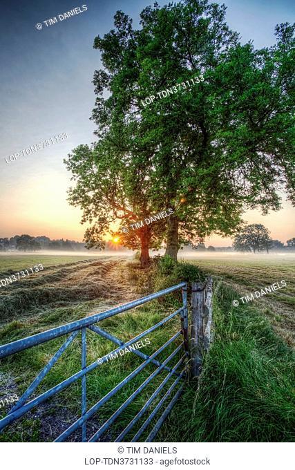 England, Leicestershire, Loughborough. Sunrise and low lying mist over farmland