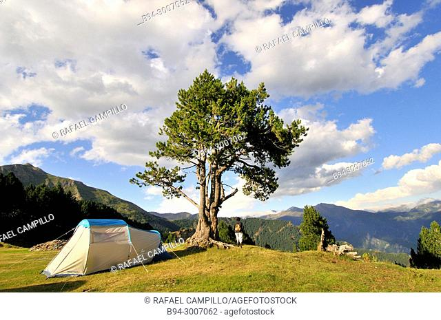 Vallnord área in summer. Tent. A ski/snowboard resort in the Pyrenees mountains in the country of Andorra, close to the border with Spain at Tor, Pallars