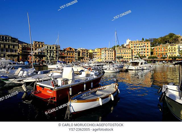 Santa Margherita Ligure harbour, Genova, Liguria, Italy, Europe