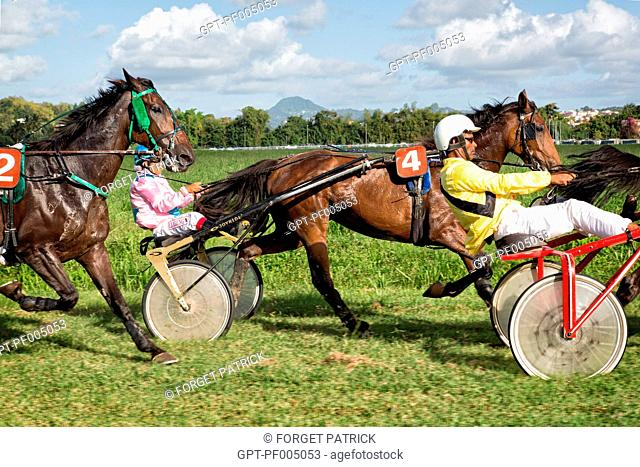 HARNESSED TROT RACE SEEN FROM THE RACE OFFICIAL'S CAR, HIPPODROME DE CARRERE RACE TRACK, LE LAMENTIN, MARTINIQUE, FRENCH ANTILLES, FRANCE