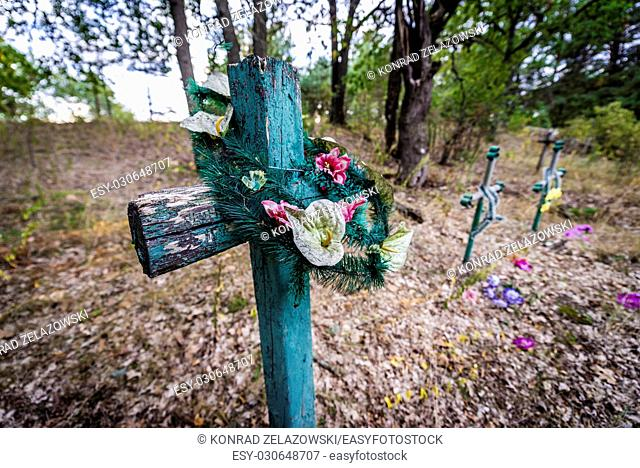 Wooden cross on cemetery in abandoned Zymovyshche village Chernobyl Nuclear Power Plant Zone of Alienation around nuclear reactor disaster, Ukraine