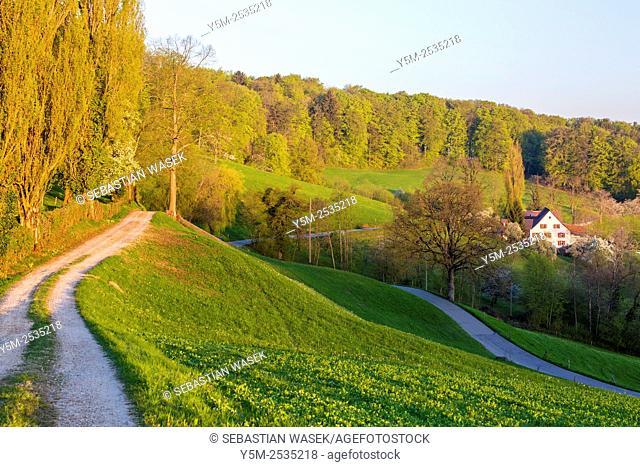 Landscape near Zeglingen, Canton Basel-Landschaft, Switzerland
