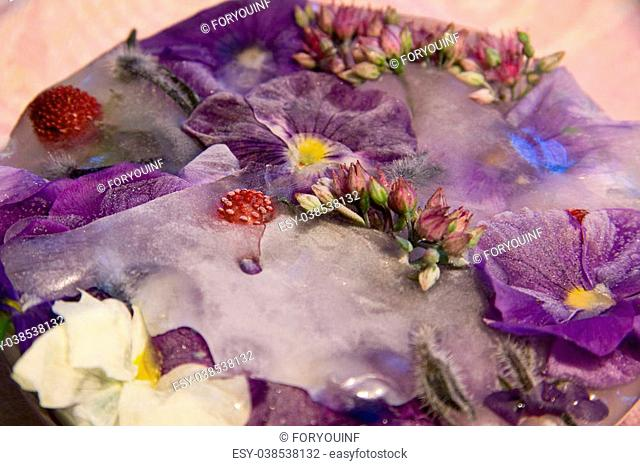 Frozen fresh beautiful flower of love-in-idleness and air bubbles in the ice cube