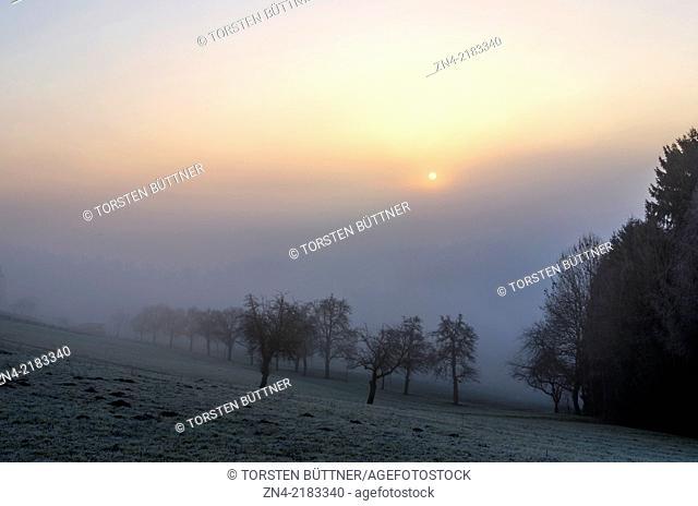 Sun gazing through high fog at sunrise on Magdalenaberg Hill in Bad Schallerbach. Austria