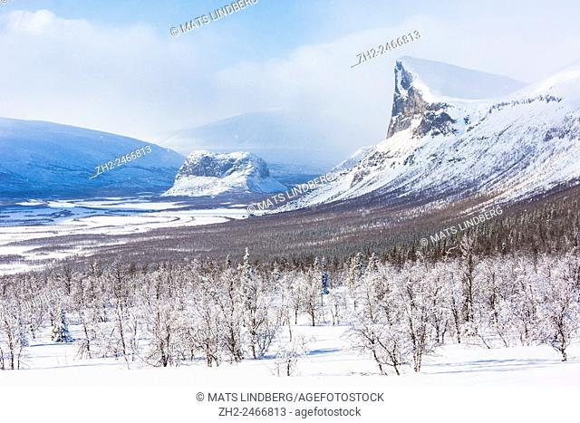 View over Sarek national park with mount Skerfe and mount namatj and Laitaure delta, Snow on the trees and sunny weather, Sarek national park, Swedish Lapland