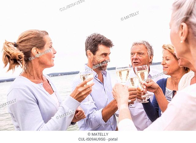 Group of friends raising wine glasses, making toast