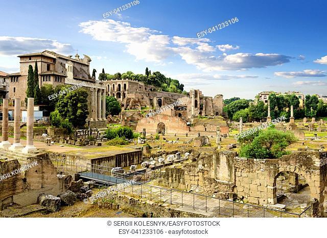 Ruins of Roman Forum in summer, Italy