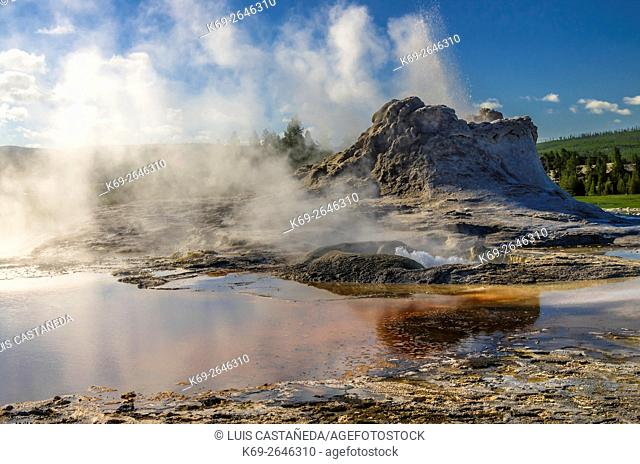 Castle Geyser. Yellowstone National Park. Wyoming. USA