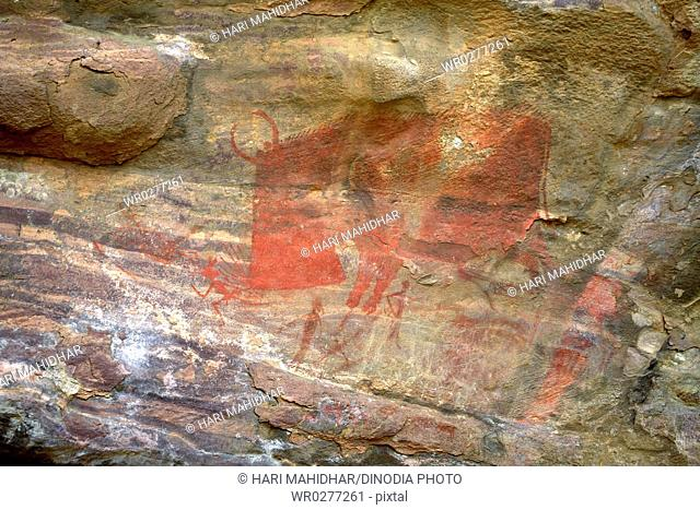 Cave paintings showing red bison attacking on rock shelters no 15 ten thousands years old at Bhimbetka near Bhopal , Madhya Pradesh , India